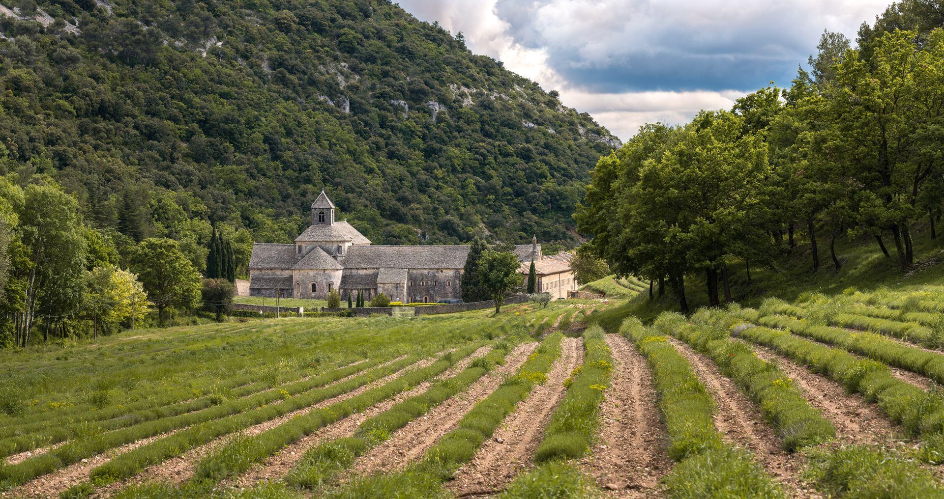 stories/2019-11-05-amazing-provence/abbaye-notre-dame-de-senanque
