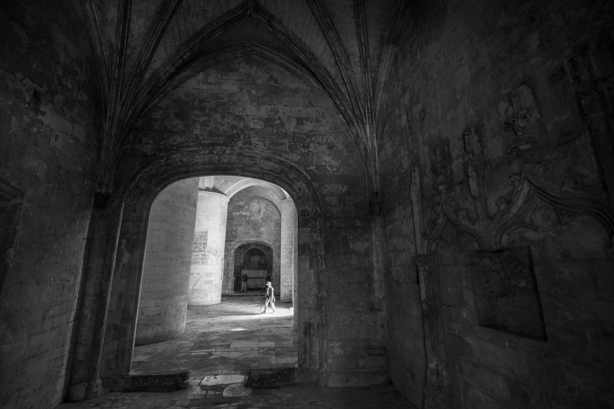 Tomb Raider, Arles