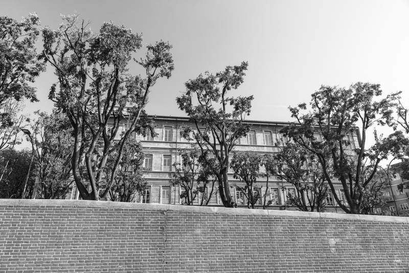 Milan wall, trees and windows